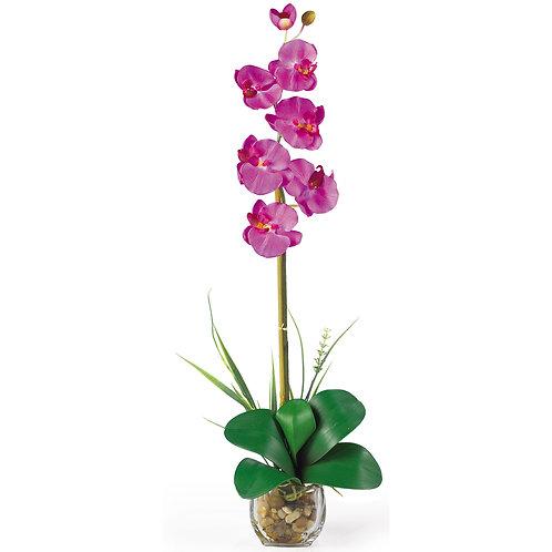 Single Phalaenopsis Liquid Illusion Silk Flower Arrangement