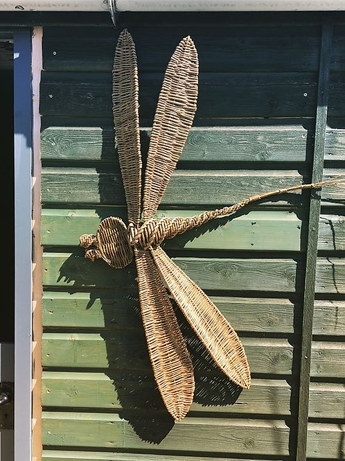 Dragonfly Wall Mounted Sculpture