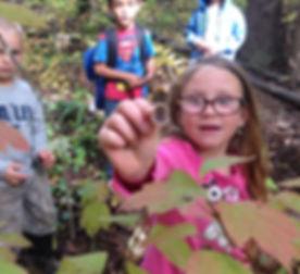 David Hoy Outdoor Primary_Fall.JPG