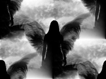 838f910e3402c41065506c7550ed1cae--fallen-angel-wings-fallen-angels