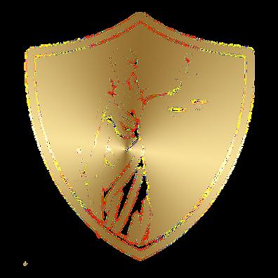 LEXLITUS LTD Logo