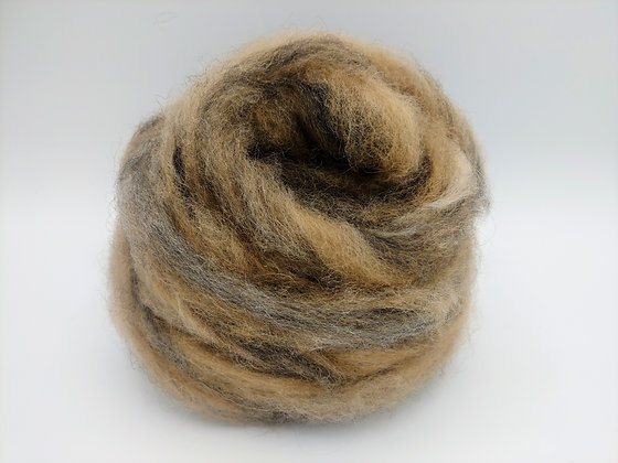 """Cookie Dough"" Finnsheep and Alpaca Blend Roving - sold by the ounce"