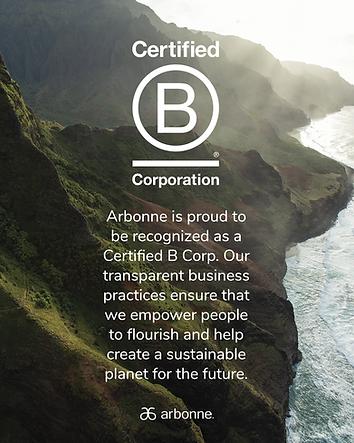 B Corporation - Statement social_image.p
