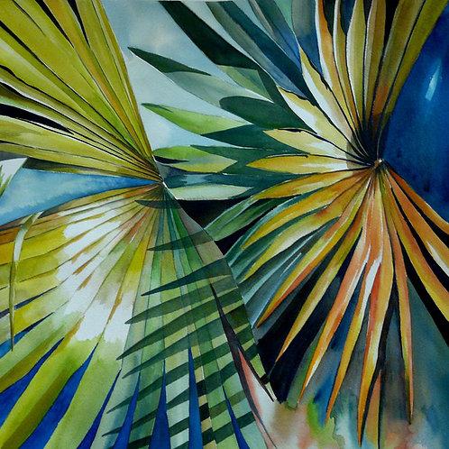 Palm 1