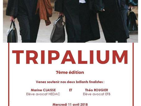 Finale du concours Tripalium