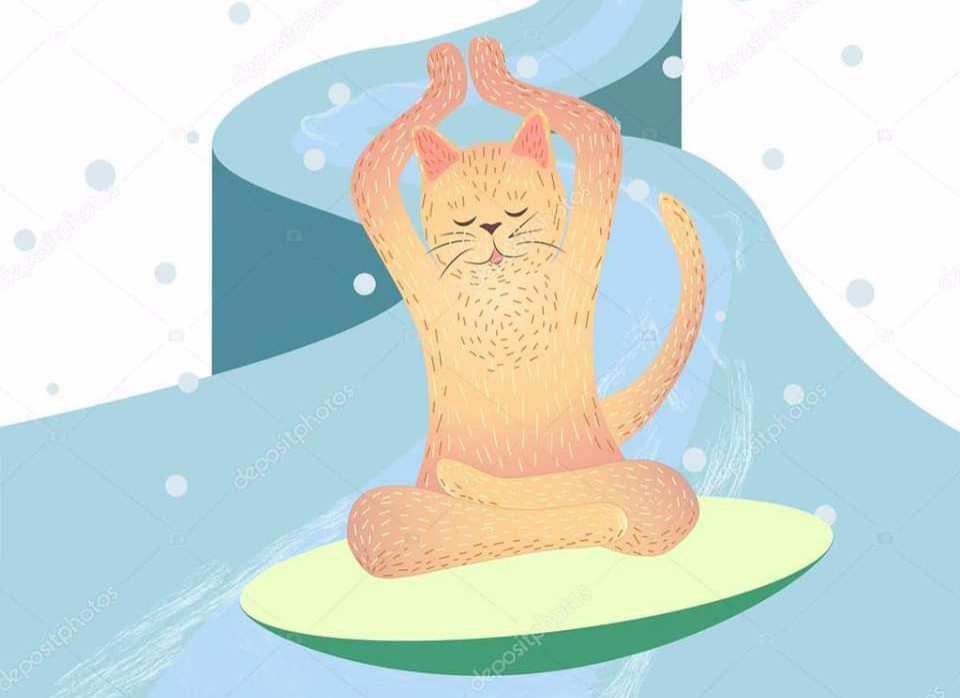 winter soltice yoga event for Calviá Cats