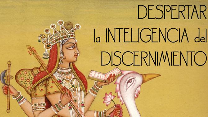 Despertar la inteligencia del discernimiento 13/9/2019