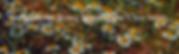 Screen Shot 2020-06-15 at 8.08.02 AM.png