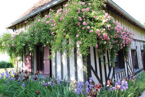 Une maison de campagne en Normandie-La Blanchetière