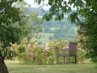 La_Blanchetière_jardin_vue_sur_la_rose