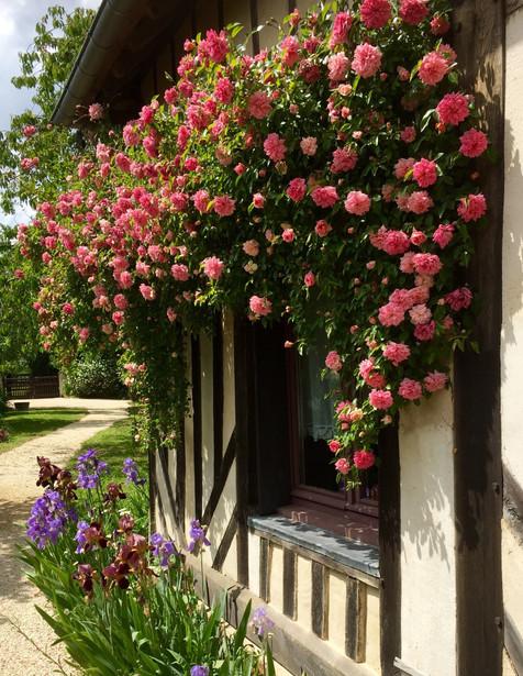 La Normandie authentique-Gîte de charme-Normandie Calvados