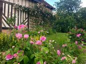 La Roseraie, gîte de charme normandie calvados, la Blanchetière