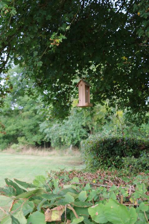 La Blanchetière pense à nos petits amis à plumes-gîte charme normandie calvados