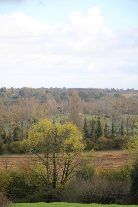 Vue d'automne sur le vallon voisin-La Blanchetière gîte de charme en normandie Calvados
