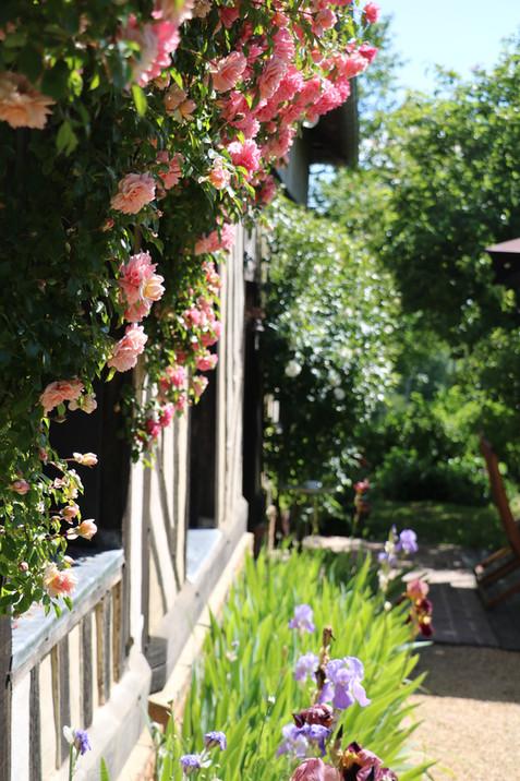 Charming cottage in Normandy-Gîte de charme en Normandie
