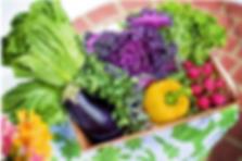NutritionandCognitiveHealth-en