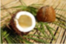 CoconutOilNewfriend-de