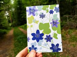 Postcard / Karto