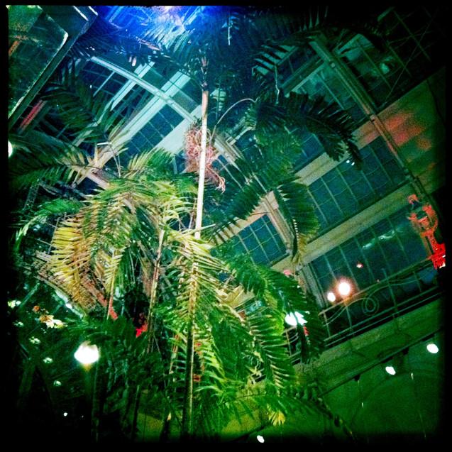 wien 23 - brasserie palmenhaus.JPG