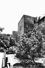 marrakech 09.jpg
