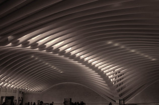 nyc058 - oculus.jpg