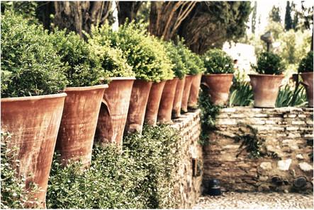 alhambra #17.jpg