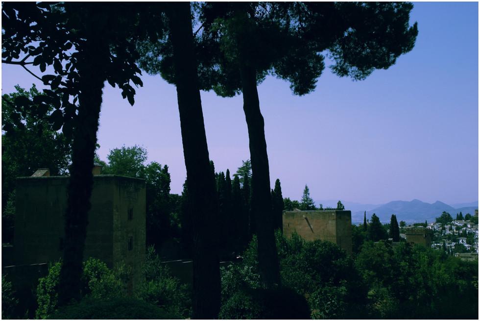 alhambra #12.jpg