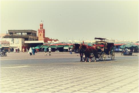 marrakech 16.jpg