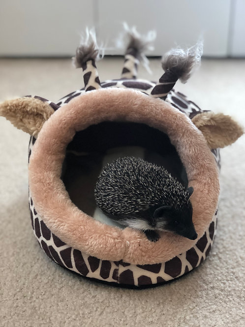 Cozy Giraffe Hideout / Bed