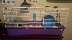 42 x 18 Kaytee Rabbit Home