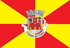 Bandeira_de_Viseu (1).jpg