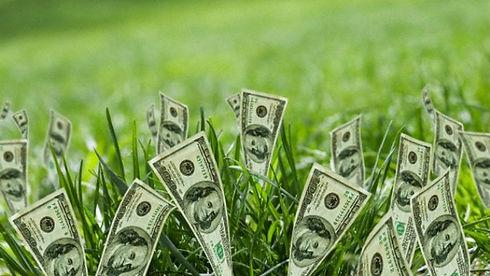 la_green_economy_ci_salver___dalla_crisi
