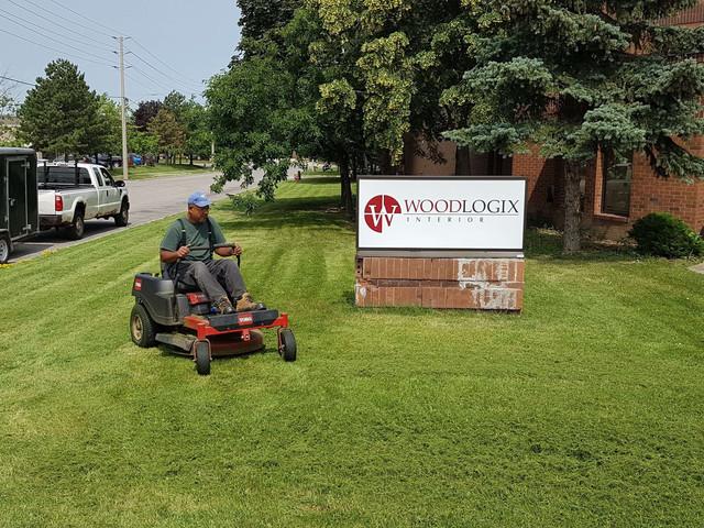 lawn_mowing_grass_streetsville