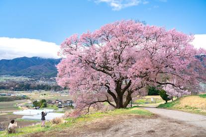 長野県箕輪町
