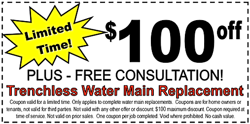 coupon $100-WS2.png