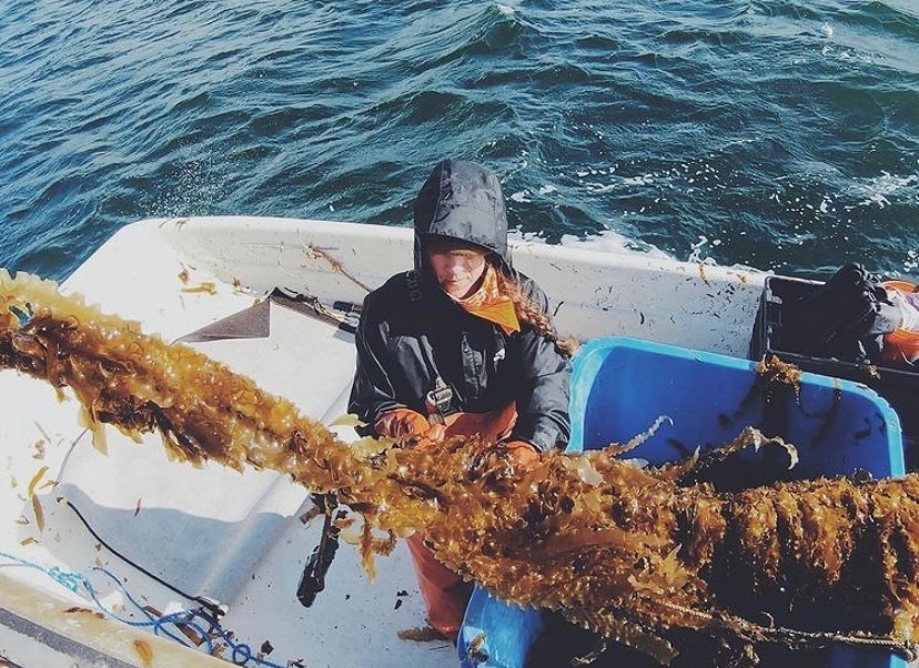 A woman processing harvested seaweed on a boat.