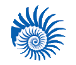 plastic ocean logo.png