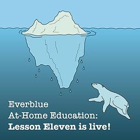 A polar bear with a melting iceberg