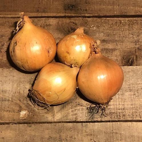 Onions (per 500 gram bag)