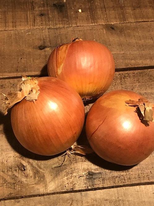 Spanish onions (each)