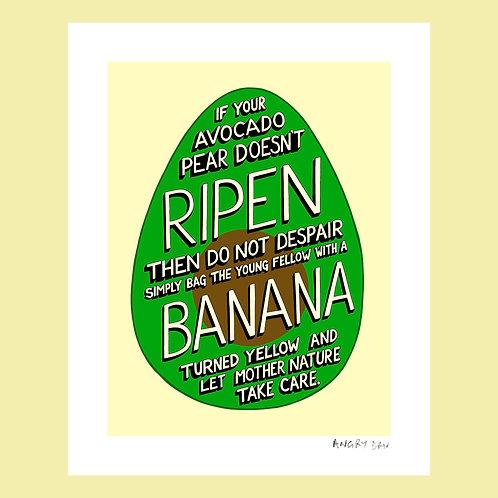 "If Your Avocado Pear (8"" x 10"" Giclée Print)"