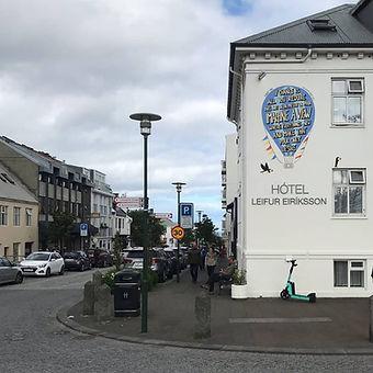 Hotel Leifur Eriksson Mural From Distance Angry Dan.jpeg