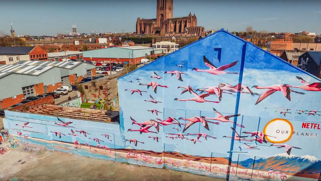 OurPlanet_Liverpool_Overhead_EndoftheLin