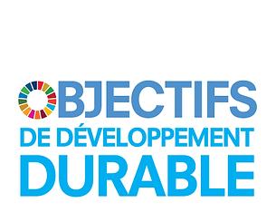 F_SDG_Logo_No-UN-Emblem-02.png
