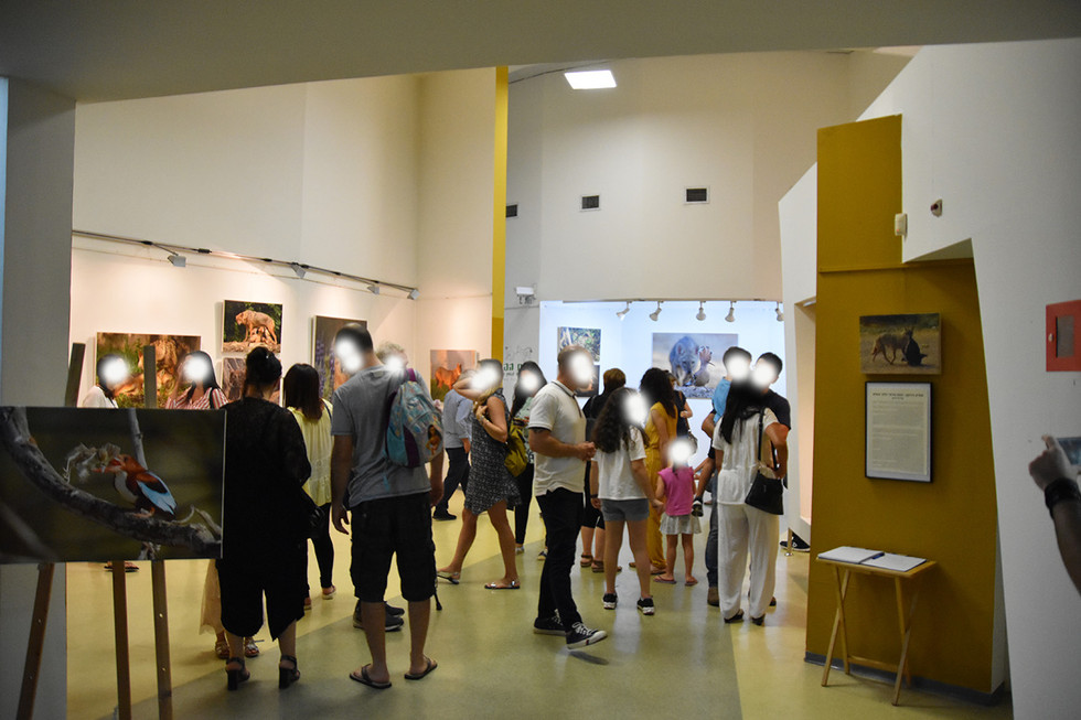 """Sole exhibition """" Yarkon park – A vanishing urban nature"""". Took place in the Museum of Man and Animal life"""" (2018) / photo by Ruth Gal"""