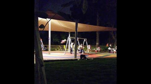 תנים בפארק הירקון- האכלות / Jackals at Tel Aviv Yarkon Park - Feedings