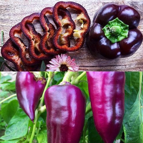 Pepper Combo - Ingrid & Oda