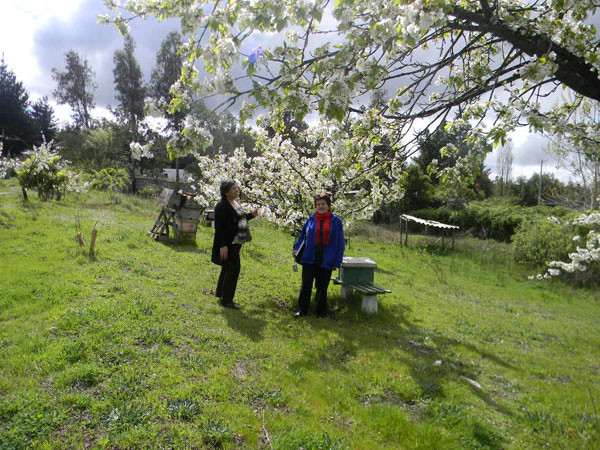 agro_2011sep32.jpg