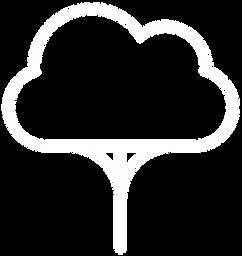 steady-logo-white-transparent-bg (1).png