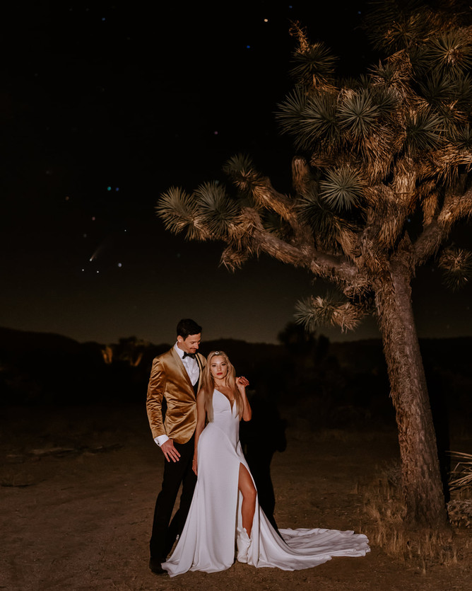 Joshua Tree Night Sky Stars bride groom wedding elopement